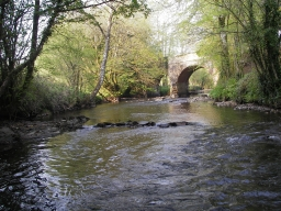 River Avon at Gara Bridge