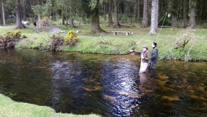 Fly fishing on Dartmoor